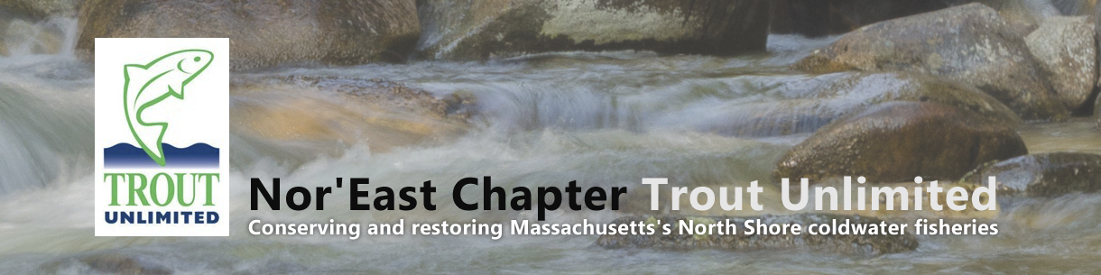 Nor'East Chapter Trout Unlimited